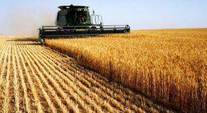 Rotas Comunicação - AGRONEGÓCIO – Oportunidade para o agronegócio brasileiro no comércio exterior, entenda